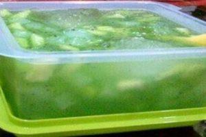 Resep Membuat Es Buah Melon